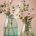 Effervescent Vase