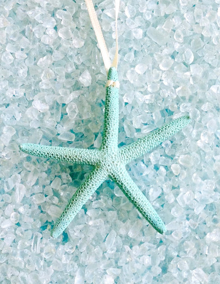 Natural Starfish Ornament in Aqua