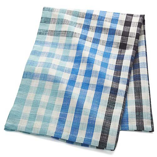 Cool Blue Check Dish Towel